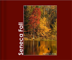 Seneca Fall - Cover